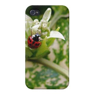 Ladybug iPhone 4 Covers
