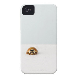 LadyBug iPhone 4 Hoesje Case-Mate iPhone 4 Case