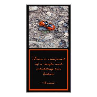 Ladybug Kisses Photo Card Template