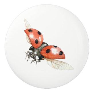 ladybug knob