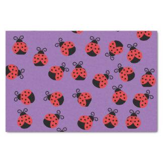 Ladybug ladybird beetles on purple tissue paper