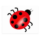 Ladybug - Ladybird Postcard