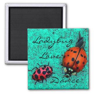 LADYBUG LOVE DANCE MAGNET