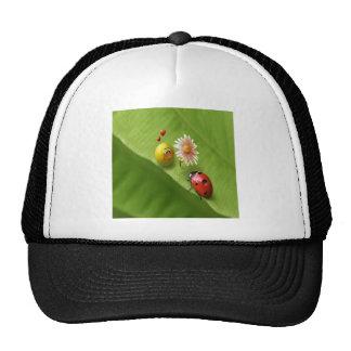 Ladybug Love Trucker Hat