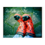 Ladybug love post card