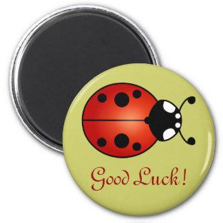 Ladybug Lucky Ladybird Beetle Good Luck 6 Cm Round Magnet