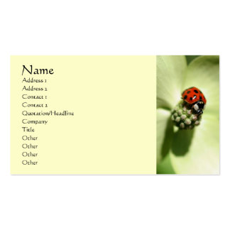 Ladybug Nature Photography Profile Business Card