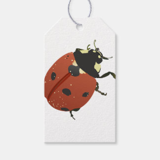 LadyBug Office Home  Personalize Destiny Destiny'S Gift Tags