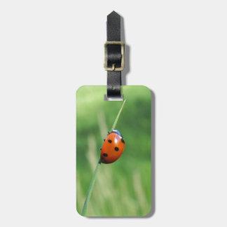 Ladybug on a blade of grass luggage tag