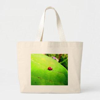 Ladybug on a Catalpa Tree Leaf Bag