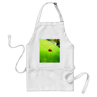 Ladybug on a Catalpa Tree Leaf Standard Apron