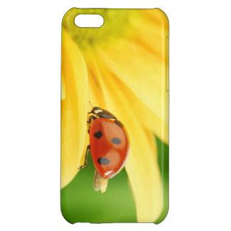 Ladybug on sunflower iPhone 5C cover