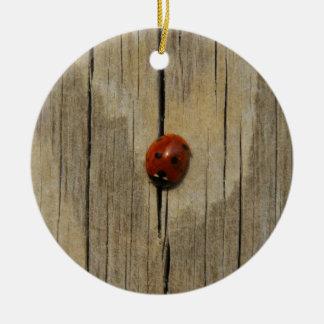 Ladybug on wood ceramic ornament