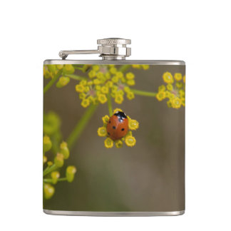 Ladybug on yellow flower hip flask