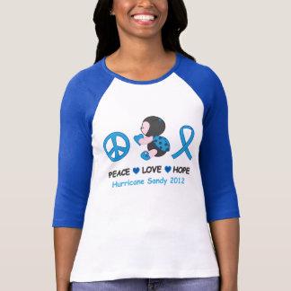 Ladybug Peace Love Hope Hurricane Sandy T-Shirt