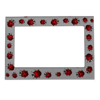 Ladybug Picture Frame Ladybird Art Frame Magnetic Photo Frame
