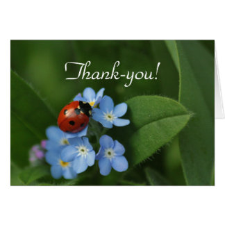 Ladybug Thank-You Greeting Card