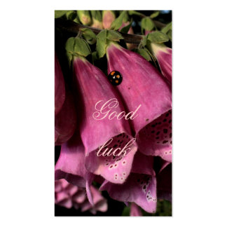 ladybug wishes good luck business card