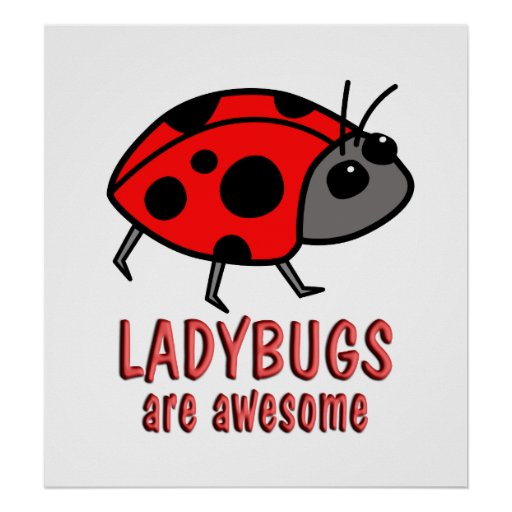 Ladybugs are Awesome Poster