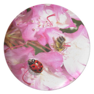 Ladybugs heart spots with bee on pink flowers party plates