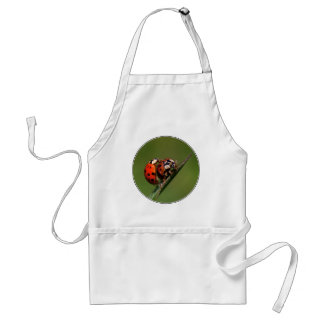 Ladybugs In Love Standard Apron