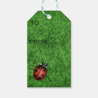 Ladybugs on Grass Gift Tag