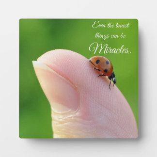 """Ladybugs """"Smallest Miracles"""" Plaque Gift"""