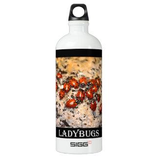 Ladybugs Water Bottle