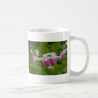 ladyslipper coffee mug