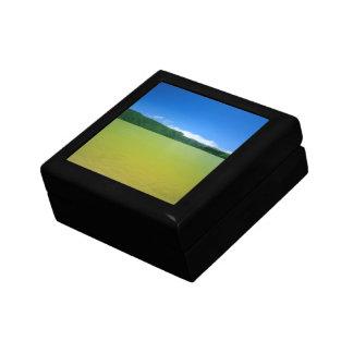 Lagoa das Furnas - Açores Small Square Gift Box