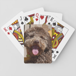 Lagotto Romagnolo Lying On A Wooden Bench Card Decks