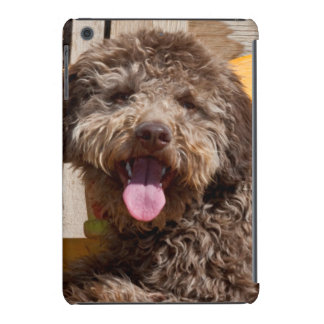 Lagotto Romagnolo Lying On A Wooden Bench iPad Mini Case