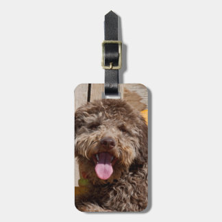 Lagotto Romagnolo Lying On A Wooden Bench Luggage Tags