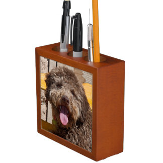 Lagotto Romagnolo Lying On A Wooden Bench Pencil/Pen Holder
