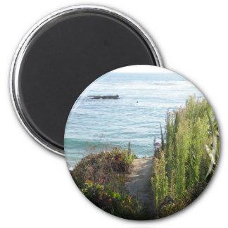 laguna beach foilage magnet