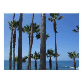 Laguna Beach - palm trees and the Pacific Ocean Poster