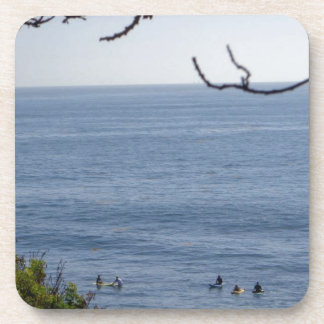 laguna beach surf coaster
