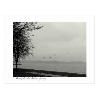 Lake Balaton scenery b&w Postcard