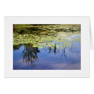 Lake Caroline Card