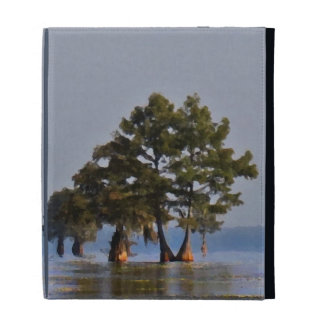 Lake Cypress Lanscape iPad Folio Cover
