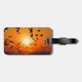Lake Erie Sunset Luggage Tag