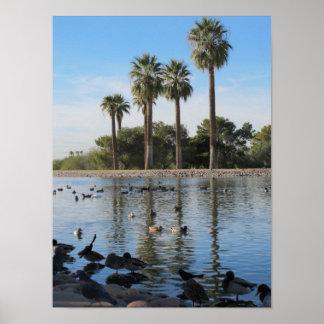 Lake Granada in Phoenix, Arizona Poster