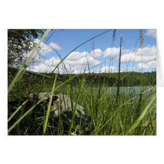 Lake grass card