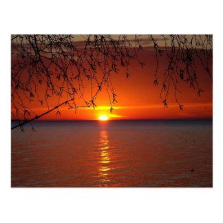 Lake Huron sunset Postcard