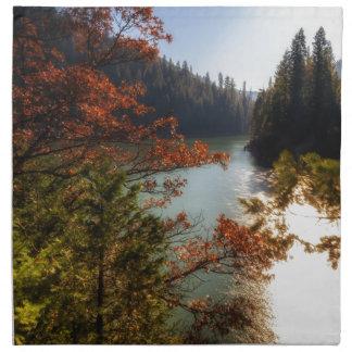 Lake McCloud Napkin