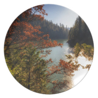 Lake McCloud Plate