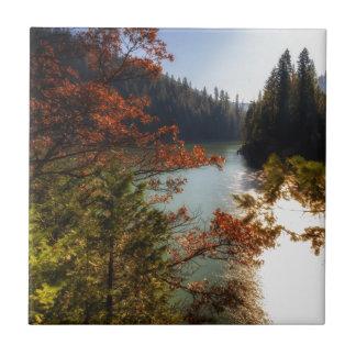 Lake McCloud Tile