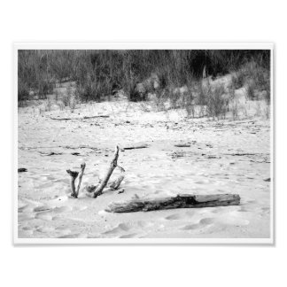 Lake Michigan beach scene Photo Print