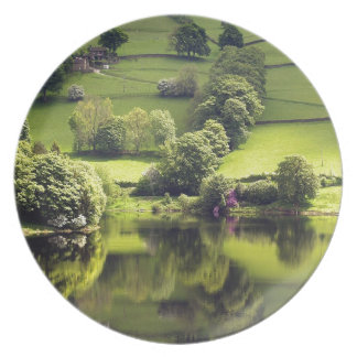 Lake Mirror Beauty Reflection Dinner Plate