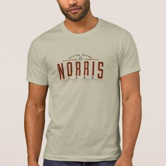 Lake Norris T-Shirt